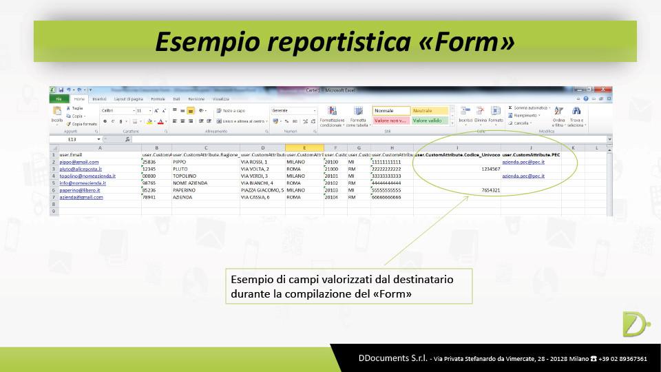 """Esempio reportistica """"form"""""""